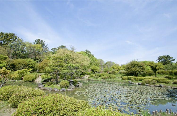 豊中市にある、服部緑地はとても大きな公園です。